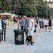 Otvoren peti Zadar Craft Beer Festival ~ Slika 255651