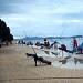 Državno prvenstvo u sportskom ribolovu štapom sa obale ~ Slika 262490