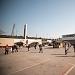 Povratak Seljačke tržnice ispred Supernova centra Zadar ~ Slika 275132