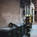 Požar u restoranu na Poluotoku ~ Slika 296956