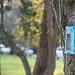Park Vruljica se (ne)održava ~ Slika 301470