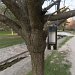 Park Vruljica se (ne)održava ~ Slika 301482