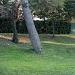 Park Vruljica se (ne)održava ~ Slika 301484