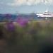 Proljetni đir srijedom ~ Slika 304532
