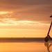 Zadarski zalazak sunca za pet -  5. 5. ~ Slika 305709
