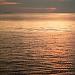 Predvečer na rivi ~ Slika 308756