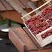 Pijaca puna proljetnih plodova ~ Slika 308823