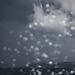 Subotnja gužva na Poluotoku ~ Slika 312758