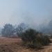 Požar kod deponija Diklo ~ Slika 313144