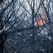 Požar kod deponija Diklo ~ Slika 313145