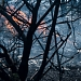 Požar kod deponija Diklo ~ Slika 313151
