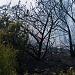 Požar kod deponija Diklo ~ Slika 313152