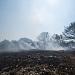 Požar kod deponija Diklo ~ Slika 313153