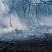 Požar kod deponija Diklo ~ Slika 313154