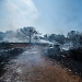 Požar kod deponija Diklo ~ Slika 313159