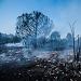 Požar kod deponija Diklo ~ Slika 313163