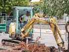 Rezidbom stabala započela nova faza radova u Tuđmanovoj