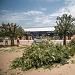 Rezidbom stabala započela nova faza radova u Tuđmanovoj ~ Slika 313381