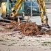 Rezidbom stabala započela nova faza radova u Tuđmanovoj ~ Slika 313385