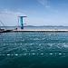 """Županijsko prvenstvo u plivanju """"Ljeto 2021"""" ~ Slika 313526"""
