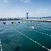 """Županijsko prvenstvo u plivanju """"Ljeto 2021"""" ~ Slika 313535"""
