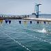 """Županijsko prvenstvo u plivanju """"Ljeto 2021"""" ~ Slika 313542"""