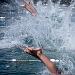 """Županijsko prvenstvo u plivanju """"Ljeto 2021"""" ~ Slika 313543"""