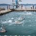 """Županijsko prvenstvo u plivanju """"Ljeto 2021"""" ~ Slika 313564"""